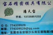 潘天宝 | 东莞市长安沙头宝石精密模具有限公司