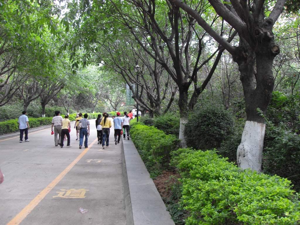 长安镇莲花山风景区,连绵十余公里